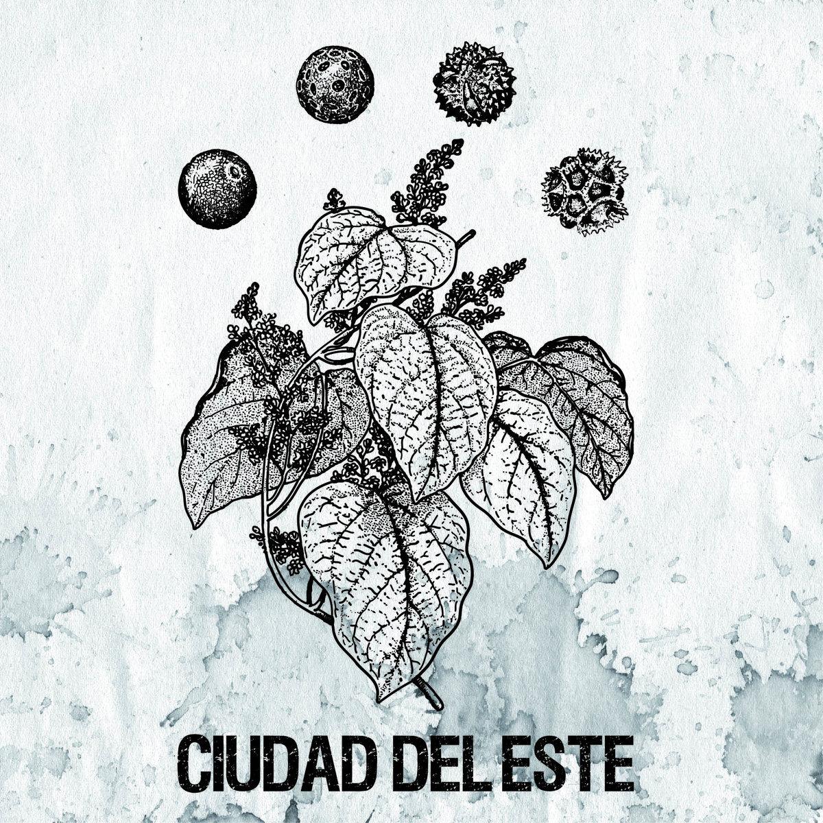 Discos - Ideo Music